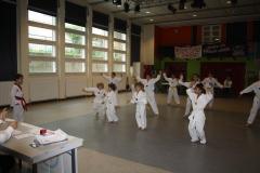 SultansEV Schloss Prüfung Taekwondo Berlin (06)