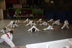 SultansEV Schloss Prüfung Taekwondo Berlin (07)