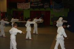 SultansEV Schloss Prüfung Taekwondo Berlin (08)