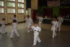 SultansEV Schloss Prüfung Taekwondo Berlin (09)