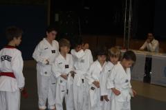 SultansEV Schloss Prüfung Taekwondo Berlin (11)