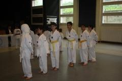 SultansEV Schloss Prüfung Taekwondo Berlin (12)