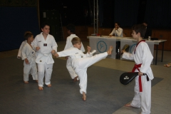 SultansEV Schloss Prüfung Taekwondo Berlin (13)