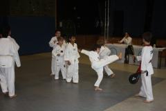 SultansEV Schloss Prüfung Taekwondo Berlin (14)
