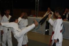 SultansEV Schloss Prüfung Taekwondo Berlin (15)