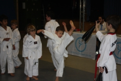SultansEV Schloss Prüfung Taekwondo Berlin (16)