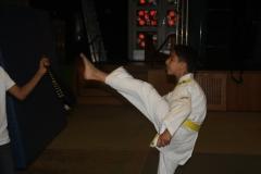 SultansEV Schloss Prüfung Taekwondo Berlin (19)
