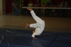 SultansEV Schloss Prüfung Taekwondo Berlin (22)