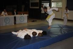 SultansEV Schloss Prüfung Taekwondo Berlin (23)