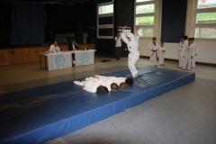 SultansEV Schloss Prüfung Taekwondo Berlin (24)