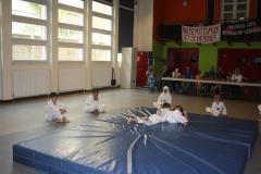SultansEV Schloss Prüfung Taekwondo Berlin (25)
