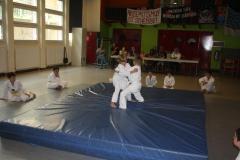 SultansEV Schloss Prüfung Taekwondo Berlin (26)