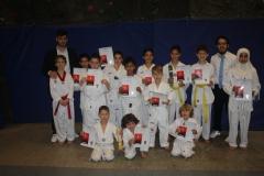 SultansEV Schloss Prüfung Taekwondo Berlin (35)