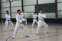 SultansEV Sophie Prüfung Taekwondo Berlin (14)