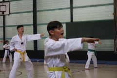 SultansEV Sophie Prüfung Taekwondo Berlin (15)