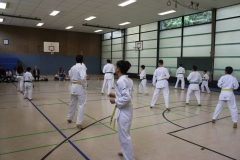 SultansEV Sophie Prüfung Taekwondo Berlin (17)