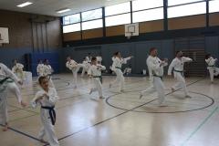 SultansEV Sophie Prüfung Taekwondo Berlin (21)