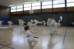 SultansEV Sophie Prüfung Taekwondo Berlin (22)