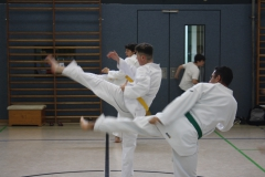 SultansEV Sophie Prüfung Taekwondo Berlin (24)