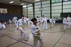 SultansEV Sophie Prüfung Taekwondo Berlin (27)
