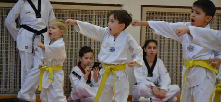 Tae Kwon Do Prüfung mit 99 Teilnehmern