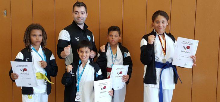 Karate Nachwuchsturnier 2017